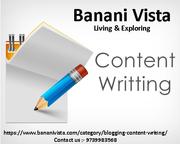 Content Writing   E-zines   Banani Vista