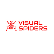 Affordable PowerPoint Presentation Design Services | Visual Spiders